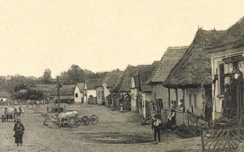 Bonyha:Fogyasztási Szövetkezet üzlete,1908