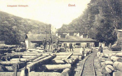 Élesd:Erőspataki fürészgyár 1909