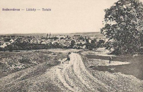 Szászváros:látkép az országúttal.1917