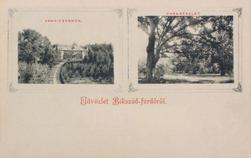 Bikszád:Anna csarnok és parkrészlet.1900