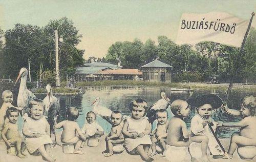 Buziásfürdő:park és tó a gyerekekkel.1908