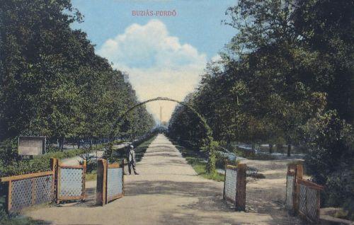 Buziás-fürdő:Aczél fürdőhőz vezető séta út.1913