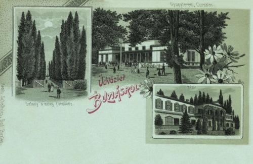 Buziás:Gyógyterem,bazár,sétány a meleg fürdőhöz,1899.