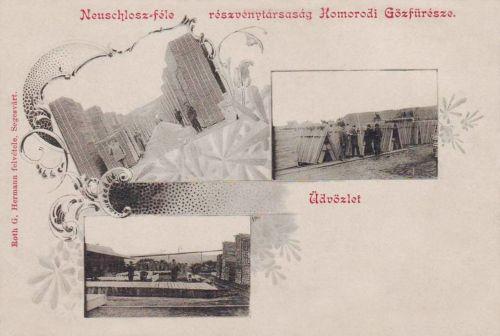 Homorod:Neuschlosz féle Gözfürész Részvénytársaság fatelepe.1904