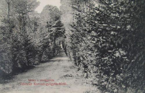 Korond:sétány a vendéglőhöz.1908