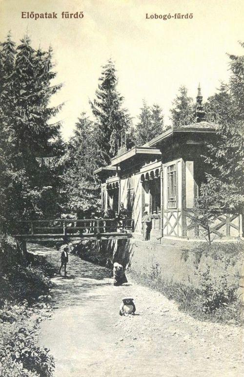 Előpatak:Lobogó fürdő.1908