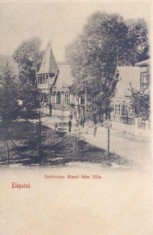 Előpatak:Goldstein Manó féle villa.1902