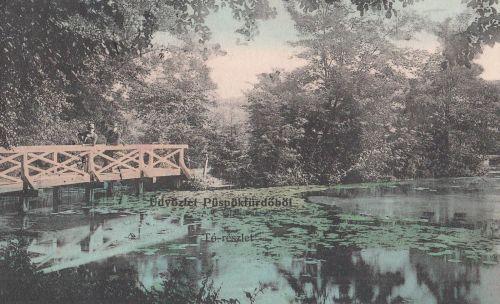 Püspökfürdő:tó részlet.1912