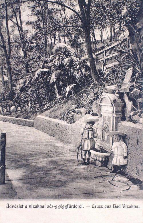 Vizakna:forrás gyerekekkel.1907