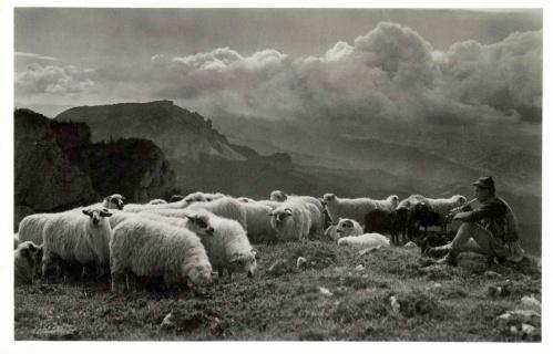 Csiki havasok:pásztor legény,1943.