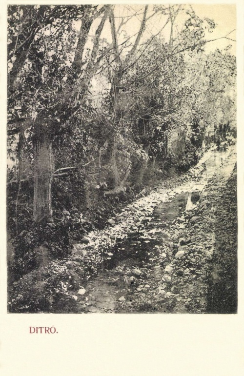Ditró:részlet a patakkal,1906.