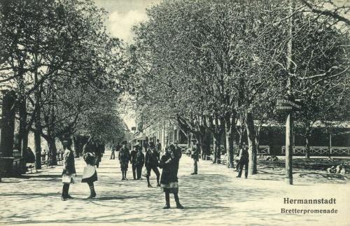 Nagyszeben:sétány a városi parkban,1915.