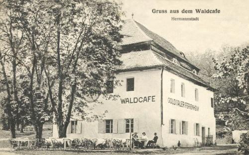 Nagyszeben:erdei kávézó,1915.