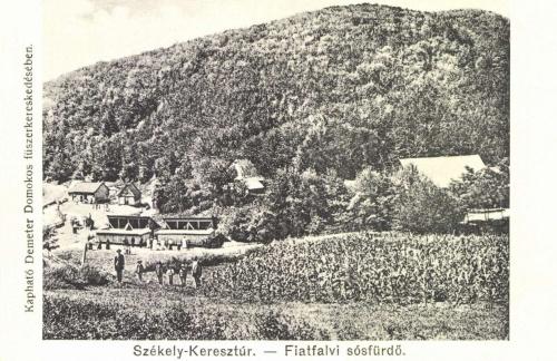 Fiatfalva:sósfürdő.,1906.